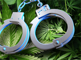 marijuana_defense_lawyer2
